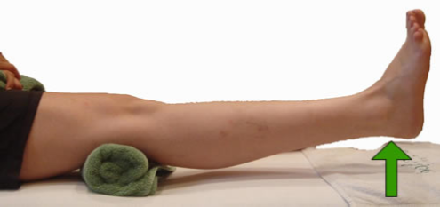 Seated Knee Extension Exercise 3, Part 2