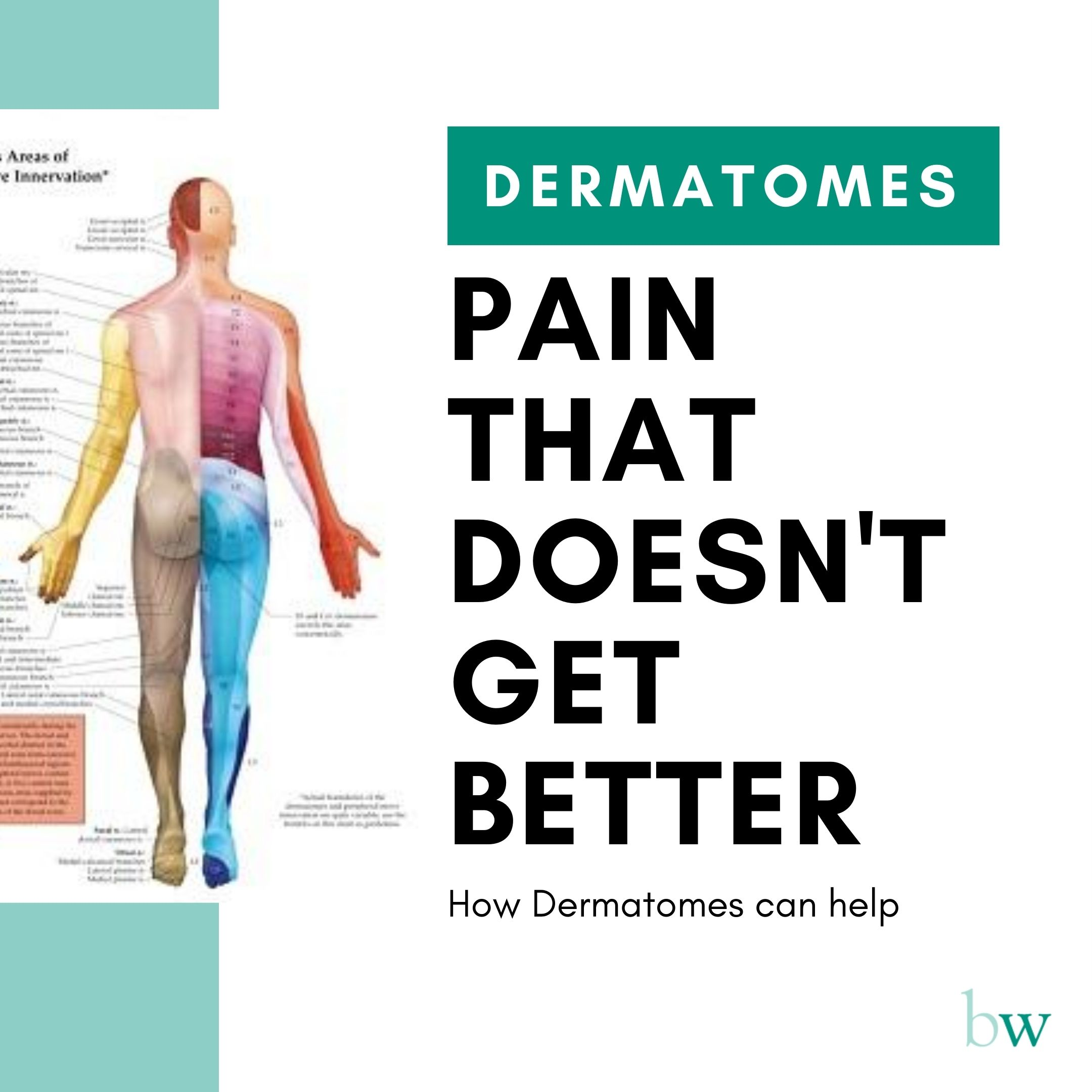 Dermatomes and nerve pain that doesn't get better at Bodyworks Clinic Marbella